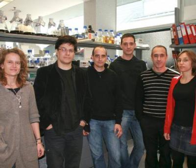 Crean un sistema celular vivo capaz de tomar decisiones