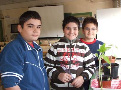 Las plantas de Salva, Julio y Pedro Miguel